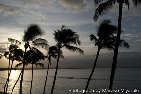 hawaii-1-169b.jpg