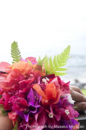 hawaii-1-174b.jpg