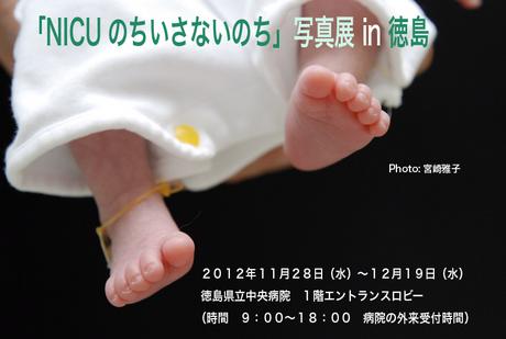 DSC_0051b.jpg